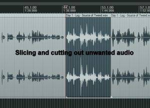 Editing audio files, cutting out unwanted sounds